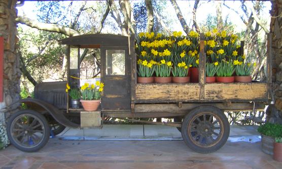 Antique Truck Ironstone Vineyards