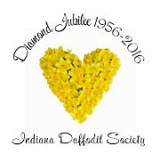 IDS_Logo_for_Fall_Forum