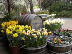 Ironstone Winery Barrel